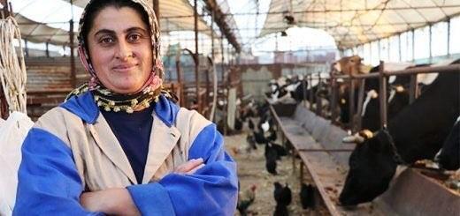 antalya'da 4 bileziğini satarak hayvancılığa başlayan ev hanımı fatma öncel, 107 keçi, 134 inek ve 200 tavuk ve  3 attan oluşan yaklaşık 1 milyon değerinde hayvan sahibi