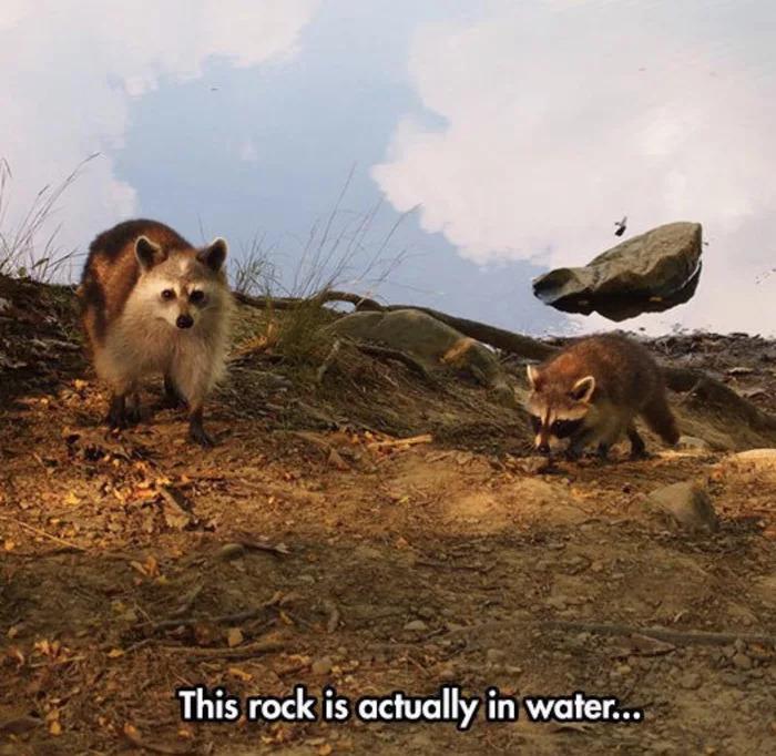 taş aslında suyun içinde