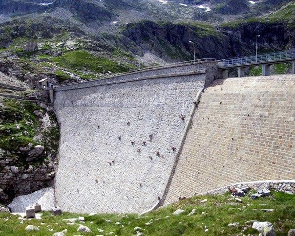 alp keçilerinin düz duvar sevdaları