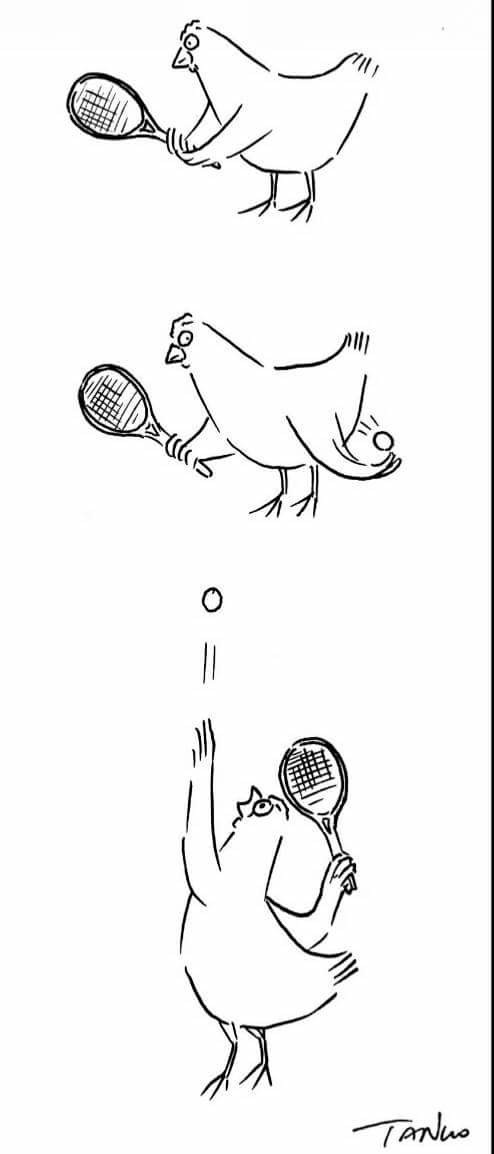 oyun, set ve maç tavuk'un