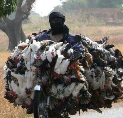 adam resmen motorla çiftlik taşıyo