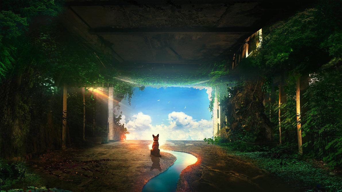 doğada yolculuk